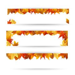 осенние баннеры с цветными листьями