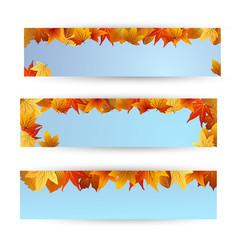 набор из осенних баннеров с голубым фоном и цветными листьями