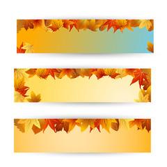 осенние баннеры с желтым фоном и цветными листьями