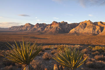 Dawn at Red Rock National Conservation Area.