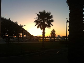 tramonto in Florida