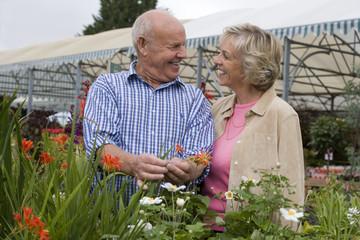 Senior couple shopping in garden centre, man holding red flower, smiling, face to face