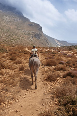 Carrier donkey and a man in a pathway. Crete. Greece