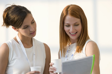 Two businesswomen reviewing paperwork