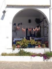polipi stesi ad essicare al sole a Paros