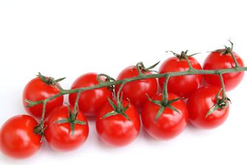 grappe de tomates cerises