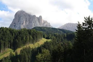 Il Sassolungo in Val Gardena