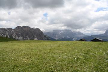 Pascoli sul Col Raiser