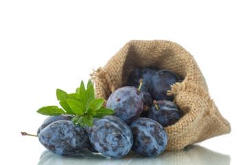 plum in the bag