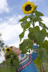 Girl looking at sunflower