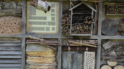 insect house and nest box of wood and natural components