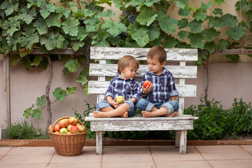 Two boys, sitting on a bench, eating apples and having fun