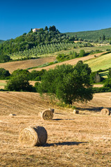 haycock and trees in sunny tuscan countryside, Italy