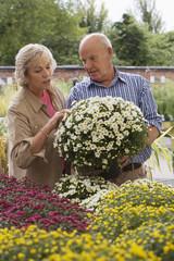 Senior couple shopping for flowers in garden centre, man holding pot plant