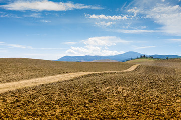 Country Road and cypresses on a hill in Crete Senesi