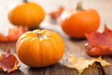 autumn halloween pumpkins on wooden background poster
