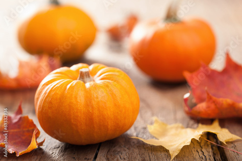 autumn halloween pumpkins on wooden background - 69332936
