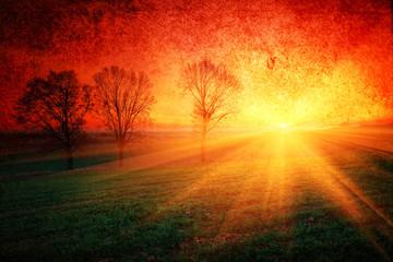 Zielone pola uprawne o zachodzie słońca w stylu retro