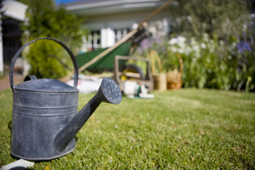 Close up of watering can on grass in backyard