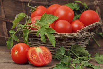 tomatoes  in autumn season still life
