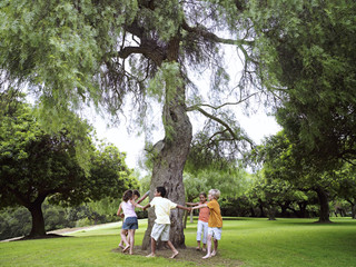 Group of children (7-9) playing ring-a-ring-o'roses in park, circling tree, holding hands