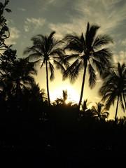Hawaii Big Island Sunset Palms Moon-10