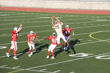 Opposing American football players competing for ball during competitive game, offensive receiver catching ball in mid-air