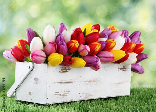 Foto op Plexiglas Bloemen tulips