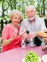 Picnic for Senior Couple