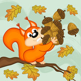 squirrel gathers acorns - vector illustration, eps poster
