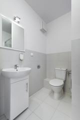 Small and compact interior bathroom design