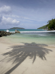 Shadow of a Palm Tree on the Beach of Mahe', Seychelles