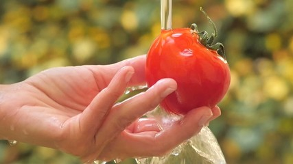 tomato in hand under flowing water slow motion
