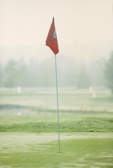 Detail view of a flag marking a hole in a golf course