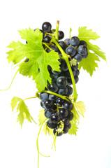grappolo d'uva con foglie