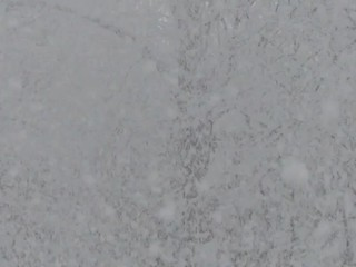 雪が降る森の風景_5