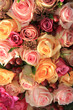 Pastel roses wedding arrangement
