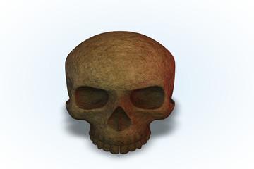 A Cork Skull Series II