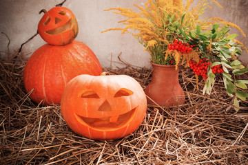 Halloween pumpkins on background old wall