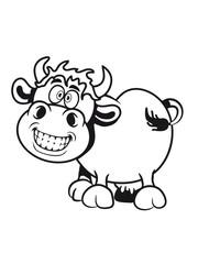 Kuh süss verrückt