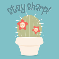 Cactus with flowers in a pot, STAY SHARP