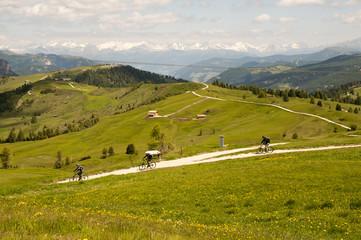 bergwelt 4681