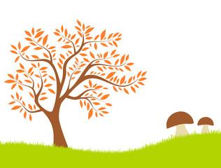 Baum Pilze Wiese