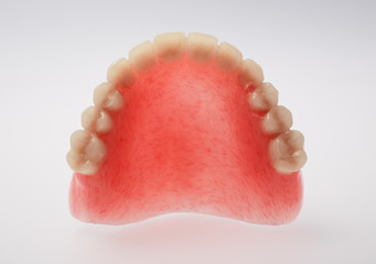 An upper denture placed on white background