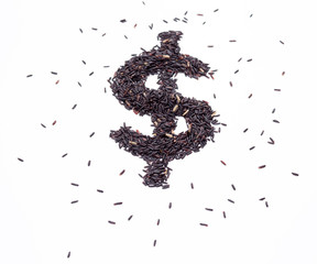 Brown rice with Dollar sign on white background
