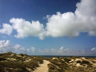 path on sand dunes