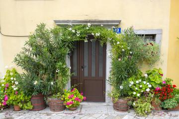 Brown door with flowers, Buzet, Croatia