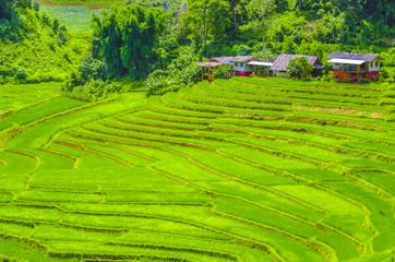Landing fields doi in thanon chiang mai