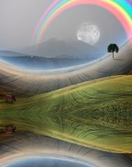Peaceful Rural Scene