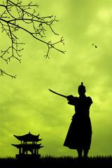 Samurai ninja at sunset